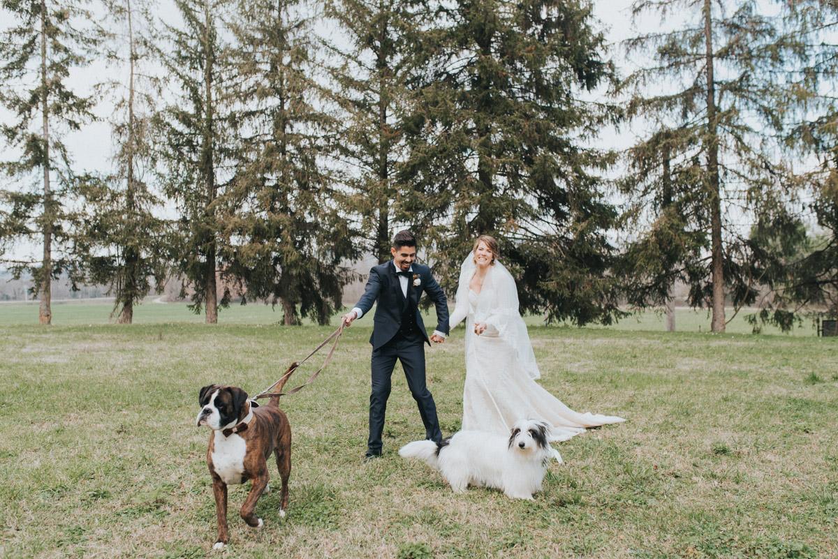 dog service wedding