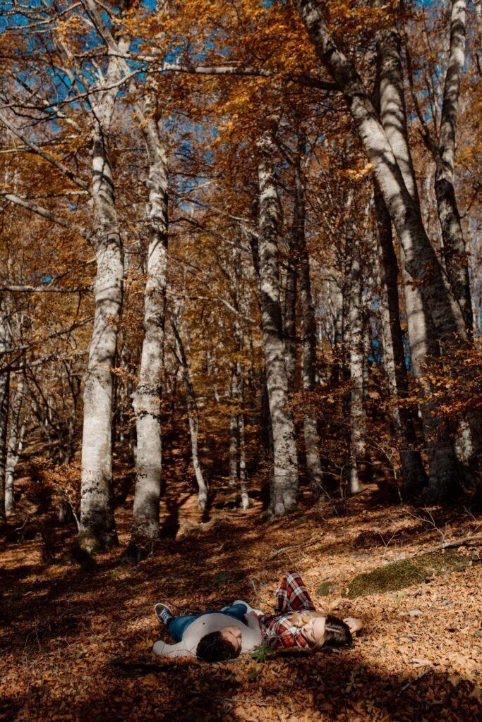 engagement foreste casentinesi